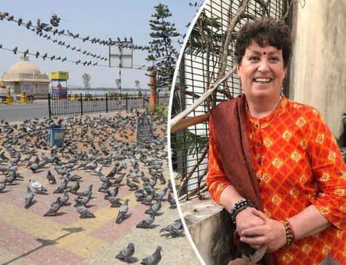 Petra uit Dedemsvaart zit 'lockdown' tussen 1,3 miljard Indiërs: 'Niemand hield zich aan de regels'